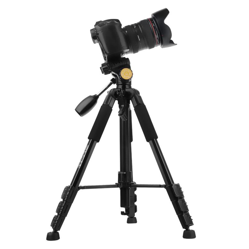用单反相机怎样拍出亮照片图片