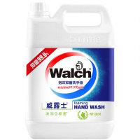 威露士 青柠盈润泡沫洗手液5L 滋润抑菌